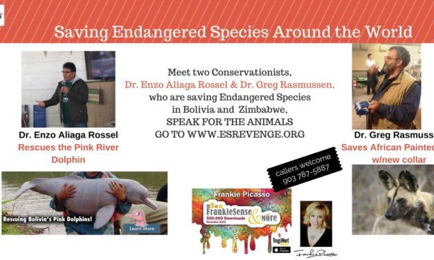 Painted Dogs and Pink Dolphins- Real Endangered Species who NEED US NOW!